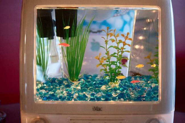 Вторая жизнь монитора iMac