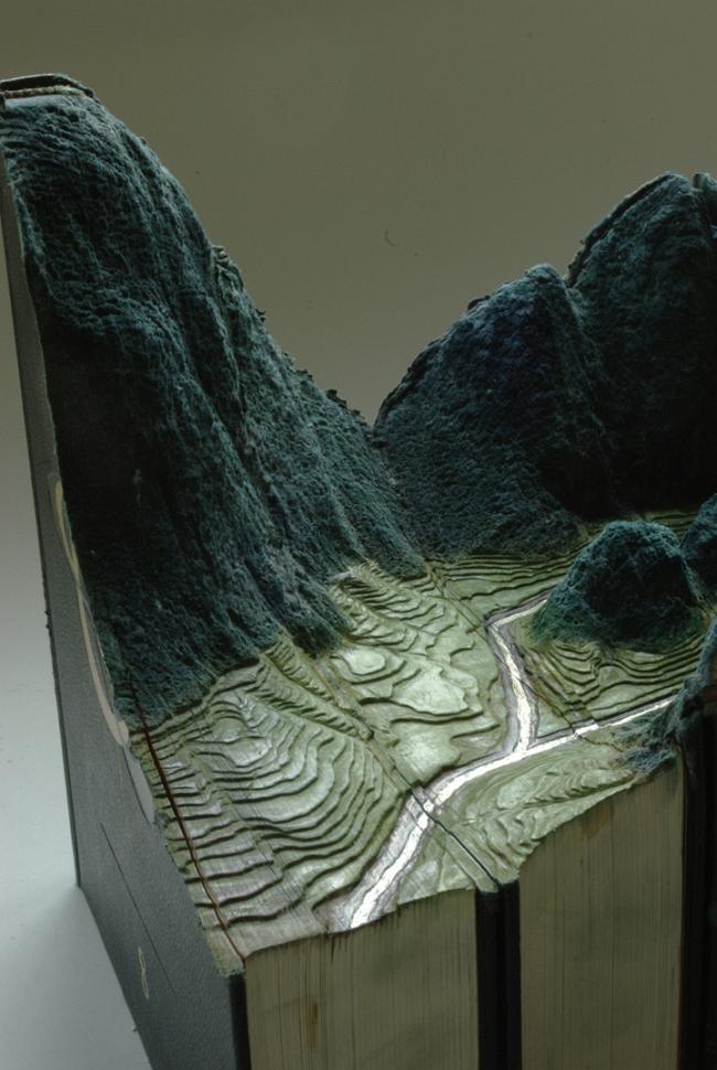 Ландшафт из книг