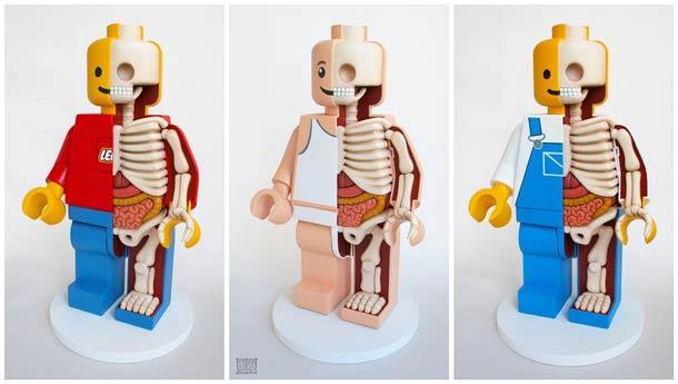 Анатомические фигурки от Freeny
