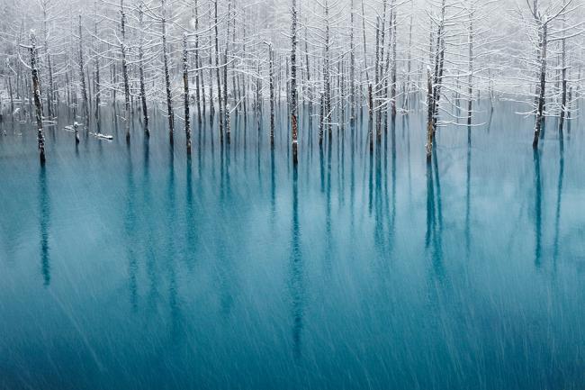 Победители фотоконкурса National Geographic