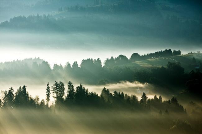 Живописный туман
