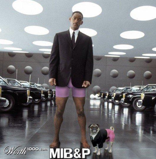 Где мои штаны?